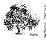 vector sketch illustration of... | Shutterstock .eps vector #692174257