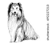 collie sketch | Shutterstock .eps vector #692227213