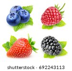 collection of isolated berries... | Shutterstock . vector #692243113