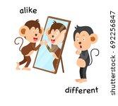 opposite alike and different... | Shutterstock .eps vector #692256847