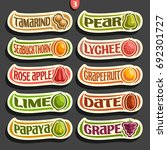 vector set of colorful fruits... | Shutterstock .eps vector #692301727