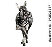 zebra full height smiling... | Shutterstock .eps vector #692528557