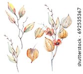 watercolor autumn composition.... | Shutterstock . vector #692535367
