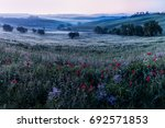 beautiful tuscan scenery moment ... | Shutterstock . vector #692571853