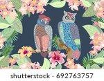evening garden and owls....   Shutterstock .eps vector #692763757