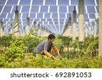women are farming | Shutterstock . vector #692891053