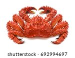 Red Brown King Crab 2 Isolated...