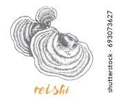 reishi ganoderma lucidum... | Shutterstock .eps vector #693073627