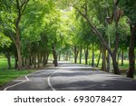 Road In The Beautiful Park...