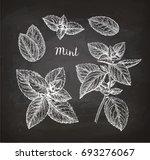 chalk sketch of mint on... | Shutterstock .eps vector #693276067
