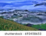 beautiful lily field with...   Shutterstock . vector #693458653