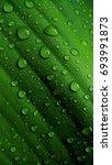water drop macro photography   Shutterstock . vector #693991873