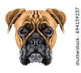 the head of the dog breed boxer ... | Shutterstock .eps vector #694159237