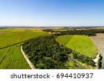 rural area in sao paulo  brazil | Shutterstock . vector #694410937