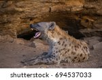spotted hyena yawn | Shutterstock . vector #694537033