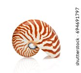 nautilus shell isolated on... | Shutterstock . vector #694691797