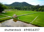 arial view of beatiful green... | Shutterstock . vector #694816357