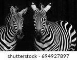 Zebras - Fine Art prints