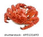 kamchatka king crab isolated on ... | Shutterstock . vector #695131693