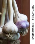 Small photo of Fresh Ripe Plants Garlic (Allium Sativum) With Roots On Blurred Background Of Wooden Close Up.