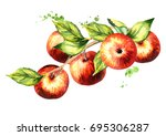 branch with red apples. hand... | Shutterstock . vector #695306287
