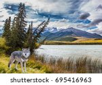 magnificent landscape in the... | Shutterstock . vector #695416963
