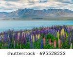 landscape at lake tekapo and... | Shutterstock . vector #695528233