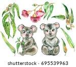 watercolor koala set. two koala ... | Shutterstock . vector #695539963