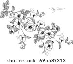 dog roses flowers drawing... | Shutterstock .eps vector #695589313