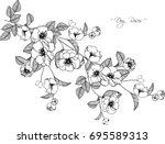 dog roses flowers drawing... | Shutterstock .eps vector #695589313