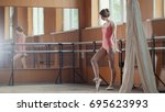 graceful girl ballerina...   Shutterstock . vector #695623993