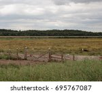 Small photo of Birds on a fence, St Aidans nature park