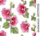 illustrations of mallow flowers.... | Shutterstock . vector #695799553