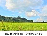 Green Nuts Field Hill Side Blu...