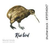 watercolor bird of isolated... | Shutterstock . vector #695954047