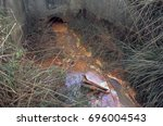 toxic effluent draining out of...   Shutterstock . vector #696004543