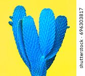 cactus. art gallery fashion... | Shutterstock . vector #696303817
