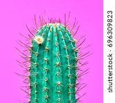 Cactus Fashion Design. Minimal...