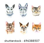 set of six different watercolor ... | Shutterstock . vector #696388507