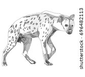 the hyena is a thin sketch... | Shutterstock .eps vector #696482113