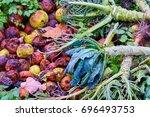 preparation of organic... | Shutterstock . vector #696493753
