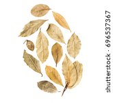 bay leaves isolated on white...   Shutterstock . vector #696537367