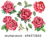 Stock photo set of beautiful roses buds and leaves watercolor illustration 696572833