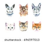 set of six different watercolor ... | Shutterstock . vector #696597013