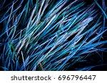 frozen green grass   abstract... | Shutterstock . vector #696796447