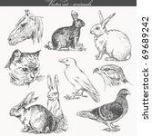 vector set   handwork   animals   Shutterstock .eps vector #69689242