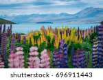 landscape at lake tekapo and... | Shutterstock . vector #696911443