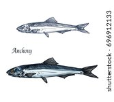 anchovy fish isolated sketch.... | Shutterstock .eps vector #696912133