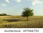 Lonely Tree In A Rocky Steppe...