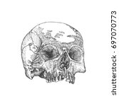 anatomic skull  weathered and... | Shutterstock . vector #697070773